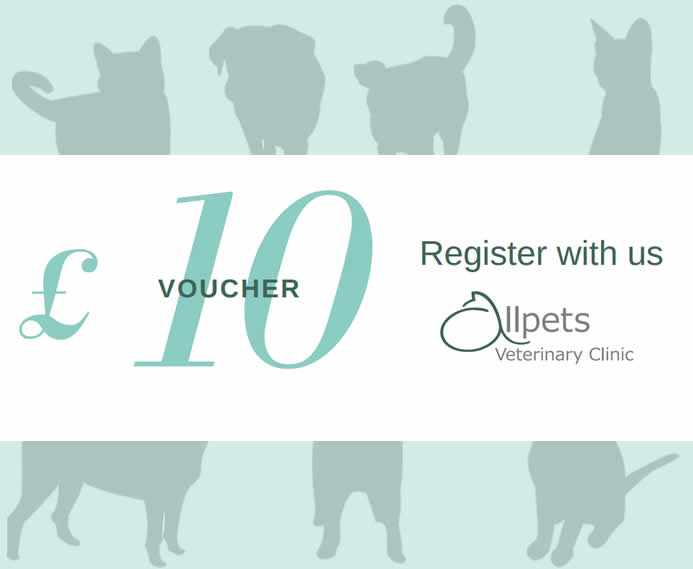 £10 voucher Allpets Veterinary Clinic