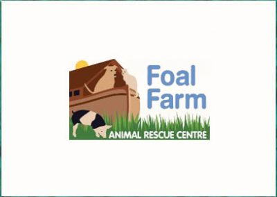 Foal Farm Animal Rescue