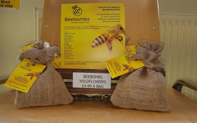 We are stocking Beebombs